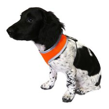 Reflective Padded Harness