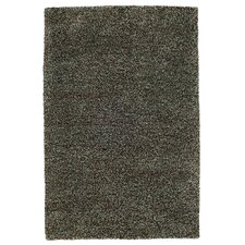 Passion Aqua / Brown Shag Rug