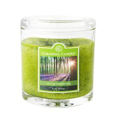<strong>Colonial Candle</strong> Spring Awakening Jar Candle