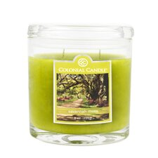 Savannah Moss Jar Candle