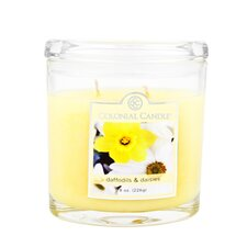 <strong>Colonial Candle</strong> Daffodils and Daisies Jar Candle