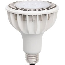 <strong>Zenaro Lighting</strong> 10 W 110/120-Volt AC LED E26 Medium Scre Bulb