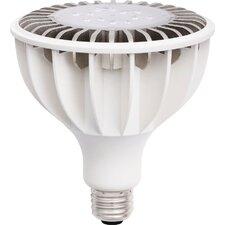 16W 110/120-Volt LED Light Bulb