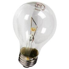 <strong>Philips Home and Healthcare Solutions</strong> Incandescent Light Bulb