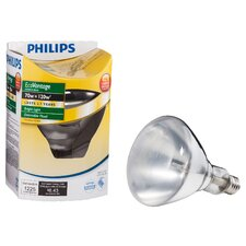 <strong>Philips Home and Healthcare Solutions</strong> 50W Incandescent Flood Light Bulb