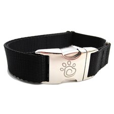 Solid Webbing Dog Collar