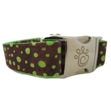 Topanga Canyon Dog Collar