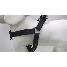 Solid Webbing Dog Harness