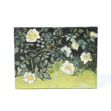 ''Wild Roses'' by Vincent Van Gogh Painting Print on Canvas