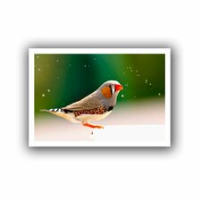 'Zebra Finch' by Lindsey Janich Unwrapped on Canvas