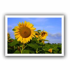 'Sunflower' by Lindsey Janich Canvas Poster