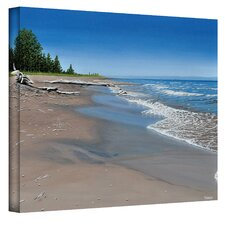 Ken Kirsch ''Driftwood Beach'' Canvas Art