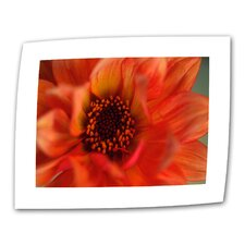 "Kathy Yates ""Fiery Dahlia"" Canvas Wall Art"