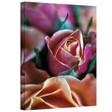''Mauve and Peach Roses'' by Kathy Yates Photographic Print on Canvas