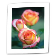 "<strong>Art Wall</strong> Kathy Yates ""Rose Trio"" Canvas Wall Art"