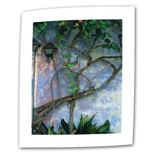"Kathy Yates ""Vine and Wall"" Canvas Wall Art"