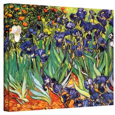 Vincent Van Gogh ''Irises in the Garden'' Canvas Art