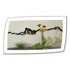 <strong>Art Wall</strong> Cynthia Decker 'Between the Cracks' Unwrapped Canvas Wall Art