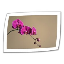 'Magenta Orchid' by Elena Ray Photographic Print on Canvas Poster