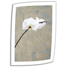Elena Ray 'Orchid Blossom' Unwrapped Canvas Wall Art