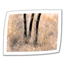'Desert Grasses II' by Linda Parker Photographic Print on Canvas