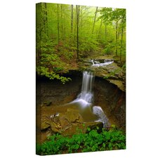 David Liam Kyle 'Water Falls' Gallery-Wrapped Canvas Wall Art