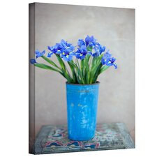 <strong>Art Wall</strong> Elena Ray 'Iris Flowers' Gallery-Wrapped Canvas Wall Art