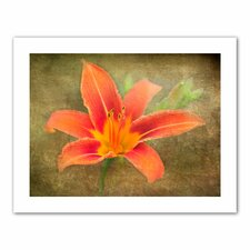 <strong>Art Wall</strong> David Liam Kyle 'Flowers in Focus IV' Unwrapped Canvas Wall Art