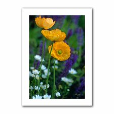 Kathy Yates 'La Playa Poppies' Unwrapped Canvas Wall Art