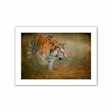 'On the Prowl' by David Liam Kyle Photographic Print on Canvas
