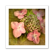 <strong>Art Wall</strong> David Liam Kyle 'Pretty in Pink' Unwrapped Canvas Wall Art