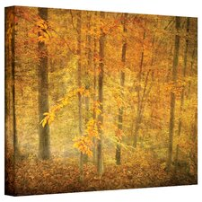 'Lost in Autumn' by David Liam Kyle Photographic Print on Canvas