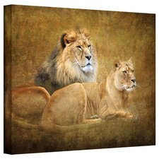 'Lions' by David Liam Kyle Photographic Print on Canvas