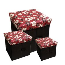 Collapsible Storage Box (Set of 3)