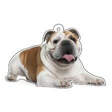 Bulldog Air Freshener (Set of 3)