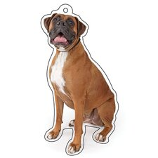 Boxer Air Freshener (Set of 3)