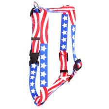 Americana Roman Harness
