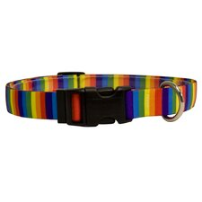 Rainbow Stripes Standard Collar