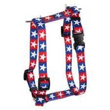 Colonial Stars Roman Harness
