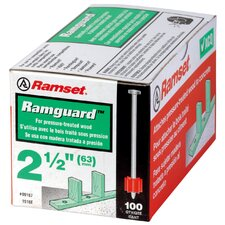 ".300 X 3"" Ramguard™ Drive Pin With Washer 09176"