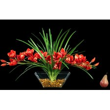 Elongated Cymbidium Orchid Center Piece