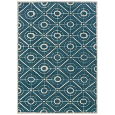 Bombay Contort Teal Rug