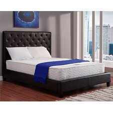 "10"" RenewFoam Coil Mattress"