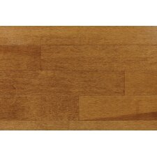 "<strong>Forest Valley Flooring</strong> Ajaccia 3-1/4"" Solid Maple Parquet Flooring in Pacific"
