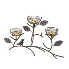 Bird Nest Iron Candelabra