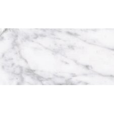 "Calacatta High Definition 24"" x 12"" Porcelain Matte Tile in White"
