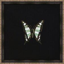 Butterflies IV Framed Art in Black