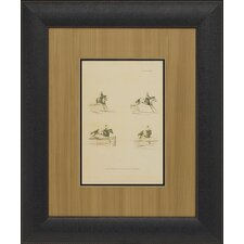 Illustration of Paces, Leaping Framed Art