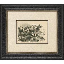 Historic Hunt I Framed Art