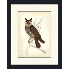 <strong>Melissa Van Hise</strong> Wise Owl Wall Art